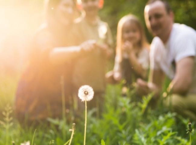 Entenda as vantagens de morar perto da natureza no interior de SP